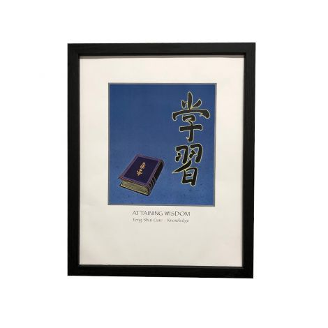 Art of Feng Shui Collection: Attaining Wisdom