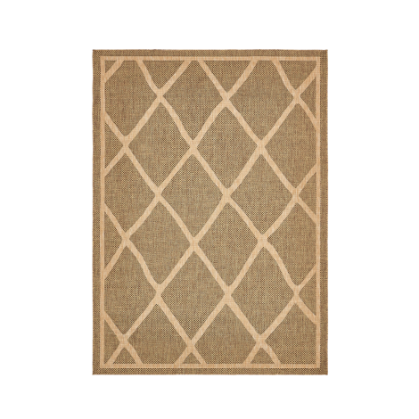 Desert Diamonds Outdoor Rug