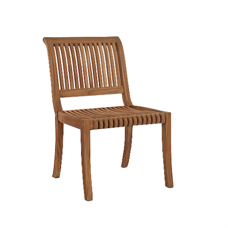Palm Side Chair